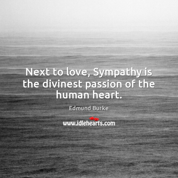 Image, Next to love, Sympathy is the divinest passion of the human heart.
