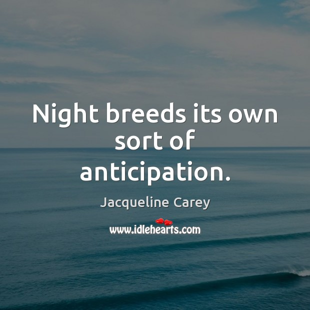 Image, Night breeds its own sort of anticipation.