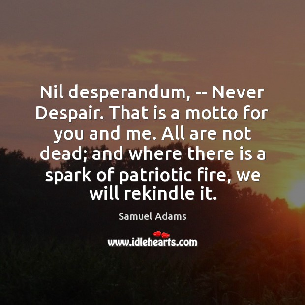 Nil desperandum, — Never Despair. That is a motto for you and Image