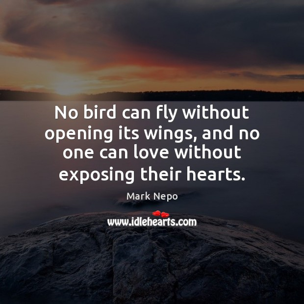 No bird can fly without opening its wings, and no one can Mark Nepo Picture Quote