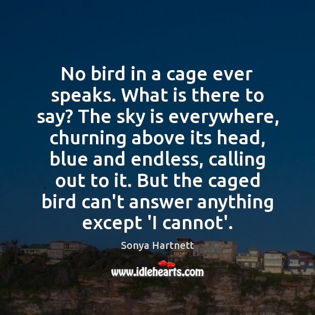 No bird in a cage ever speaks. What is there to say? Image