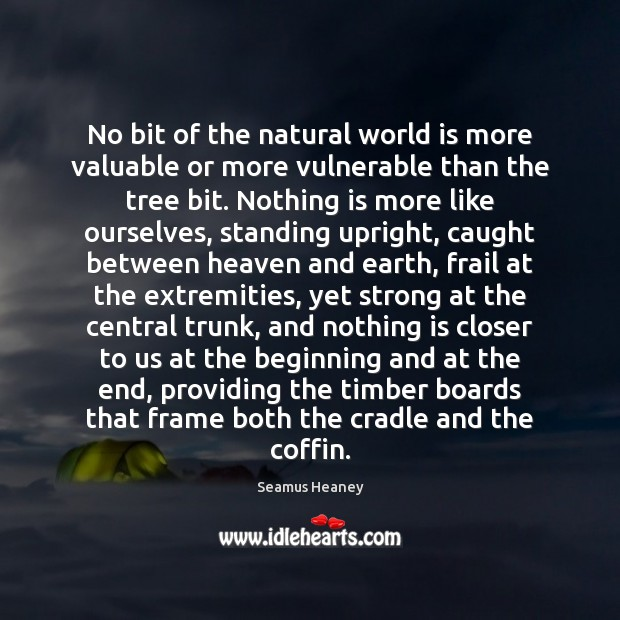 No bit of the natural world is more valuable or more vulnerable Seamus Heaney Picture Quote