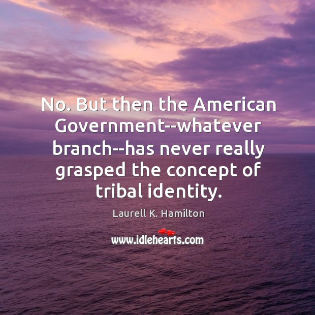 Image, No. But then the American Government–whatever branch–has never really grasped the concept
