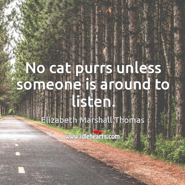 No cat purrs unless someone is around to listen. Image