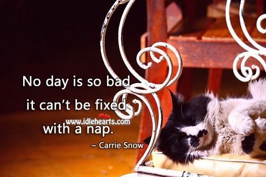 No day is so bad it can't be fixed with a nap. Carrie P. Snow Picture Quote