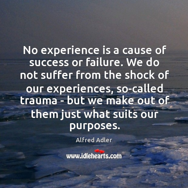 Image, No experience is a cause of success or failure. We do not