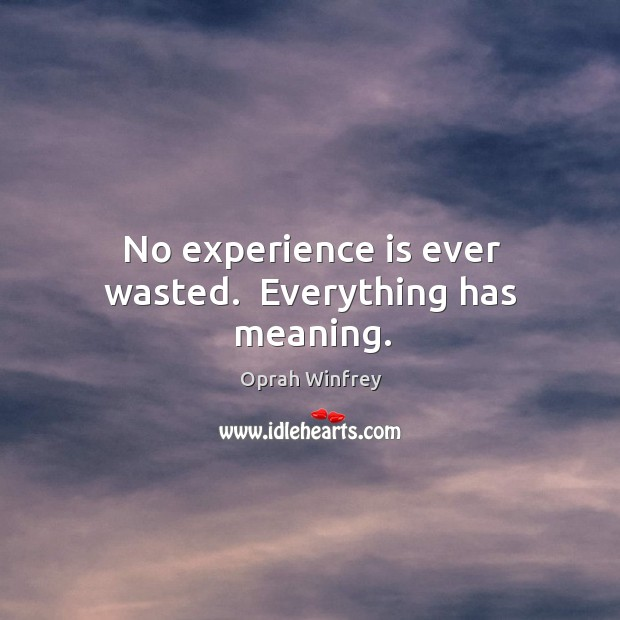 No experience is ever wasted.  Everything has meaning. Image