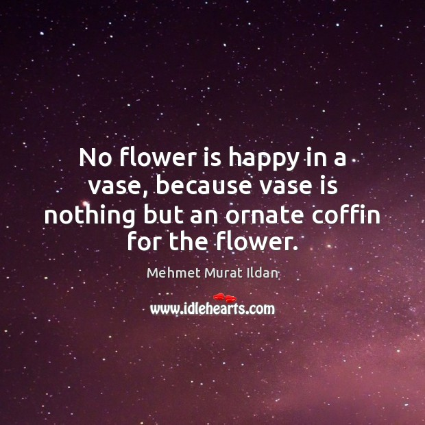 No flower is happy in a vase, because vase is nothing but an ornate coffin for the flower. Image