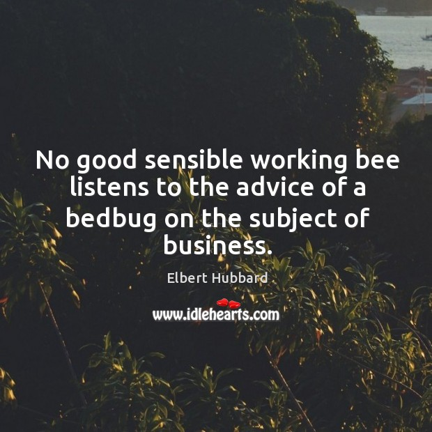 Image, No good sensible working bee listens to the advice of a bedbug on the subject of business.