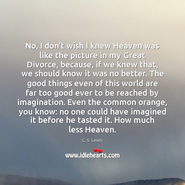 No, I don't wish I knew Heaven was like the picture Divorce Quotes Image