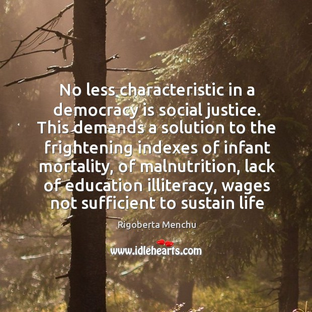 No less characteristic in a democracy is social justice. This demands a Image