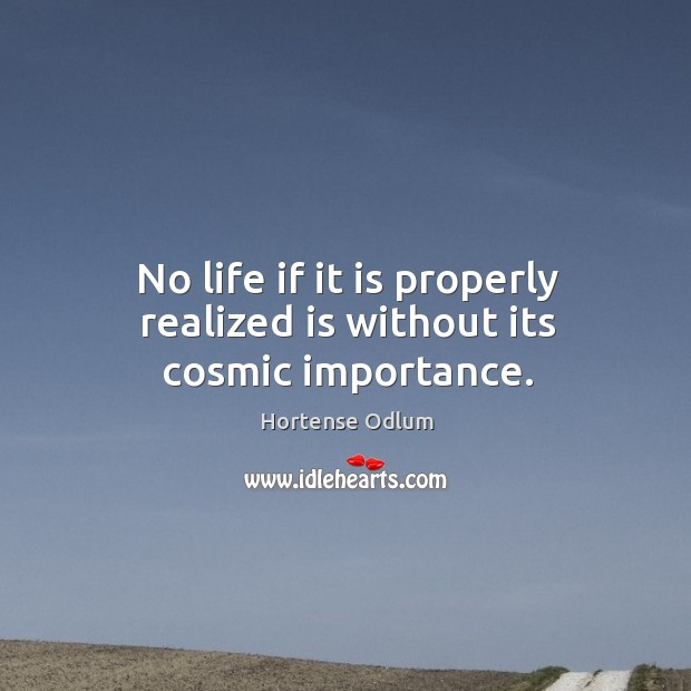 No life if it is properly realized is without its cosmic importance. Hortense Odlum Picture Quote