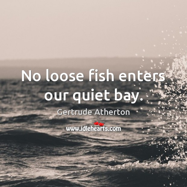 No loose fish enters our quiet bay. Image