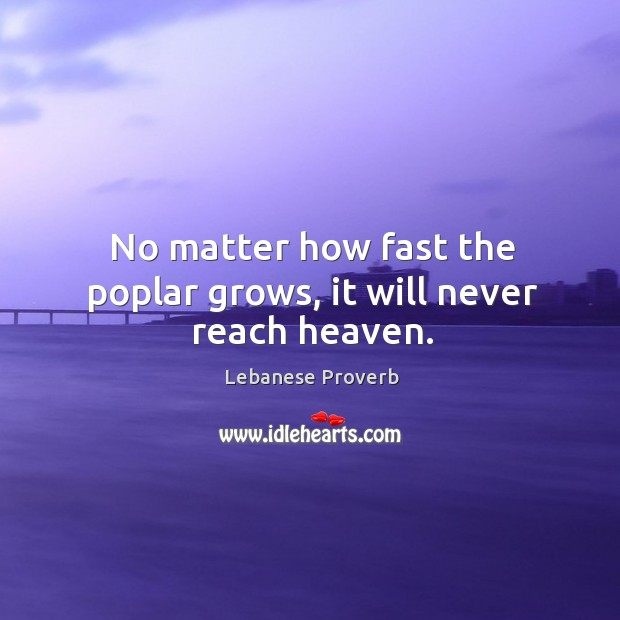 No matter how fast the poplar grows, it will never reach heaven. Lebanese Proverbs Image