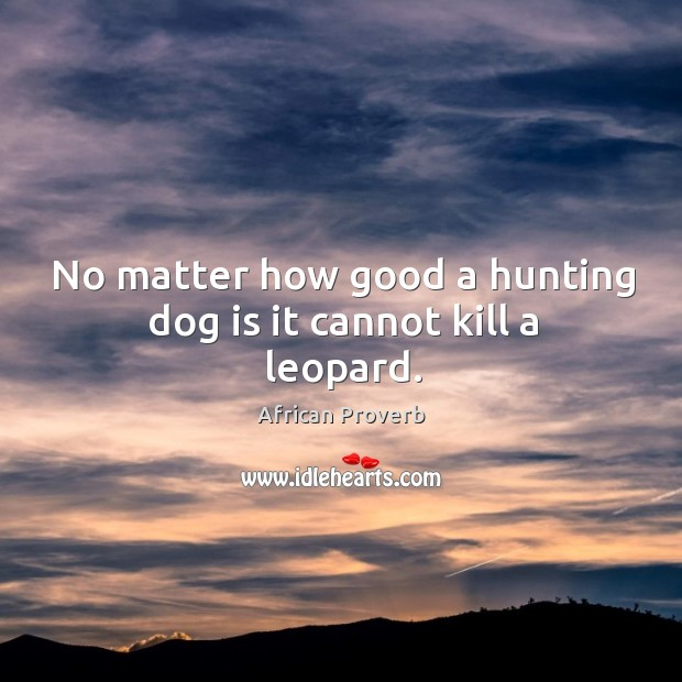 Image, No matter how good a hunting dog is it cannot kill a leopard.