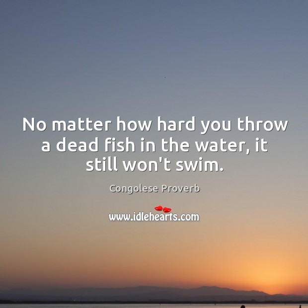 No matter how hard you throw a dead fish in the water, it still won't swim. Congolese Proverbs Image