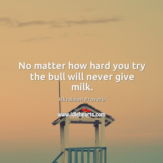 No matter how hard you try the bull will never give milk. Ukrainian Proverbs Image