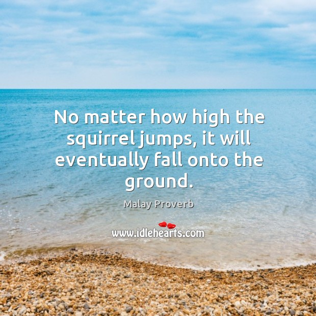 No matter how high the squirrel jumps, it will eventually fall onto the ground. Malay Proverbs Image