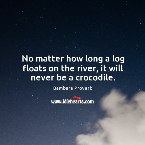 No matter how long a log floats on the river, it will never be a crocodile. Bambara Proverbs Image