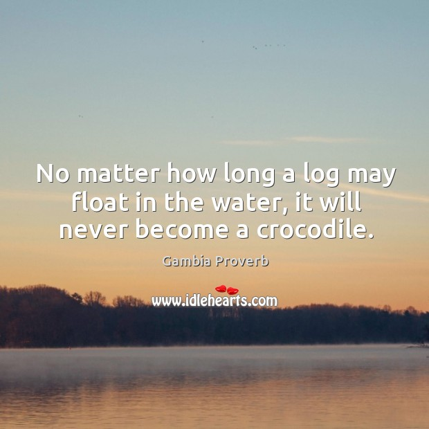 No matter how long a log may float in the water, it will never become a crocodile. Gambia Proverbs Image