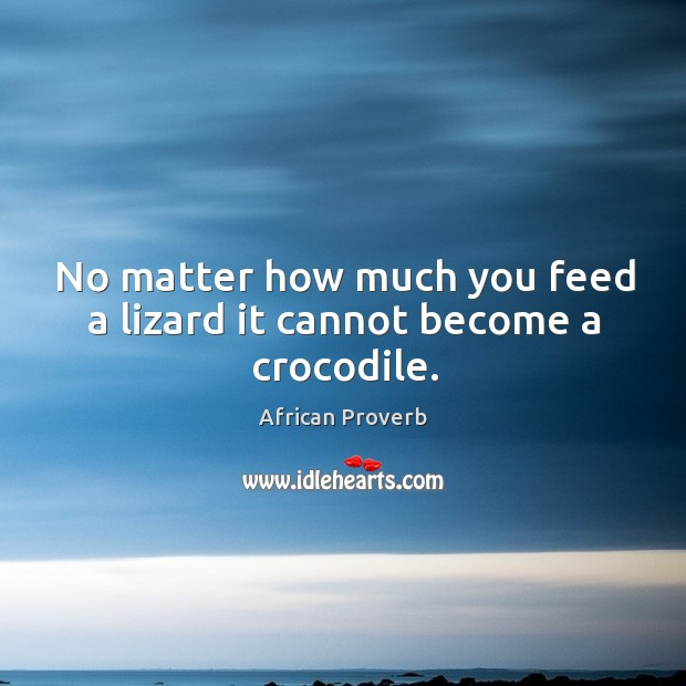 Image, No matter how much you feed a lizard it cannot become a crocodile.