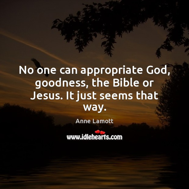 No one can appropriate God, goodness, the Bible or Jesus. It just seems that way. Image