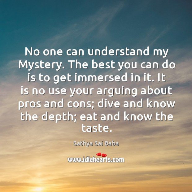 Image, No one can understand my Mystery. The best you can do is