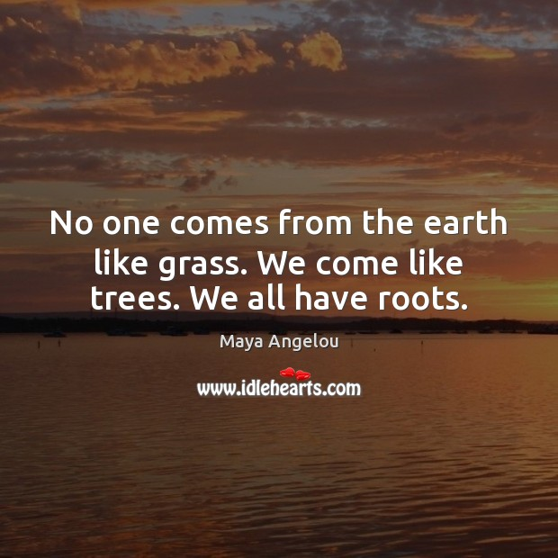 Image, No one comes from the earth like grass. We come like trees. We all have roots.