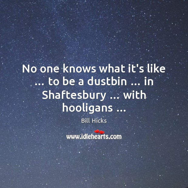 Image, No one knows what it's like … to be a dustbin … in Shaftesbury … with hooligans …