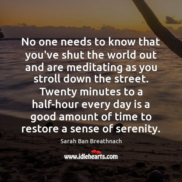 No one needs to know that you've shut the world out and Sarah Ban Breathnach Picture Quote