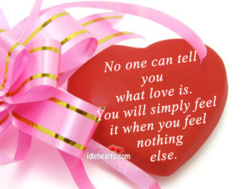 No one can tell you what love is Image