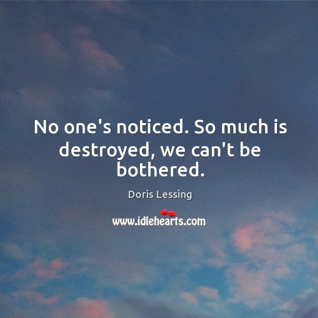 No one's noticed. So much is destroyed, we can't be bothered. Doris Lessing Picture Quote