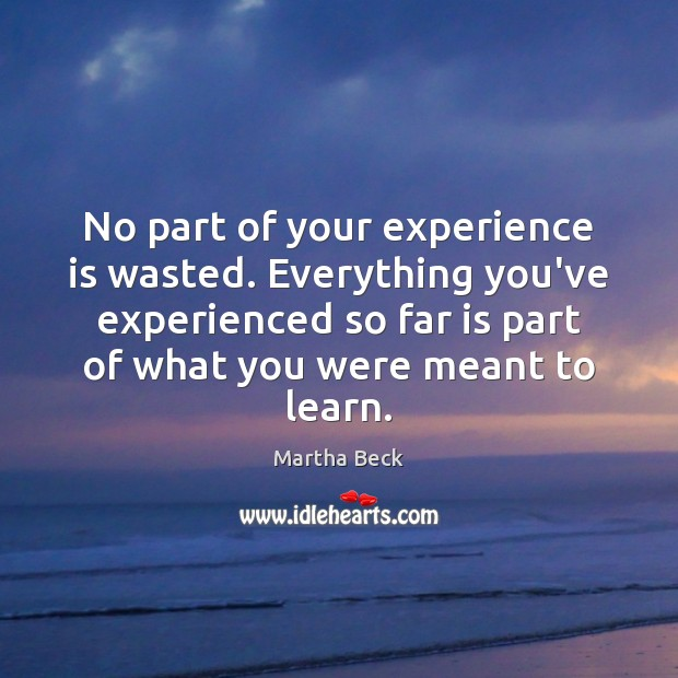 Image, No part of your experience is wasted. Everything you've experienced so far