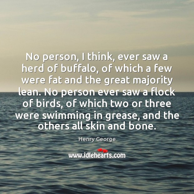 No person, I think, ever saw a herd of buffalo, of which Henry George Picture Quote