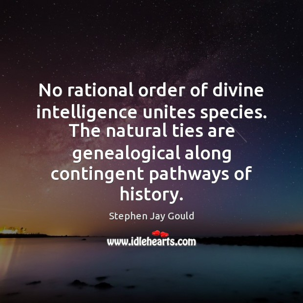 No rational order of divine intelligence unites species. The natural ties are Stephen Jay Gould Picture Quote