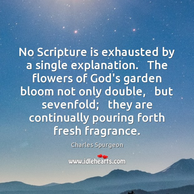 No Scripture is exhausted by a single explanation.   The flowers of God's Image