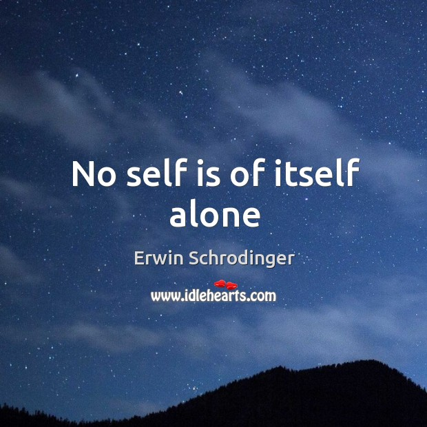 No self is of itself alone Erwin Schrodinger Picture Quote