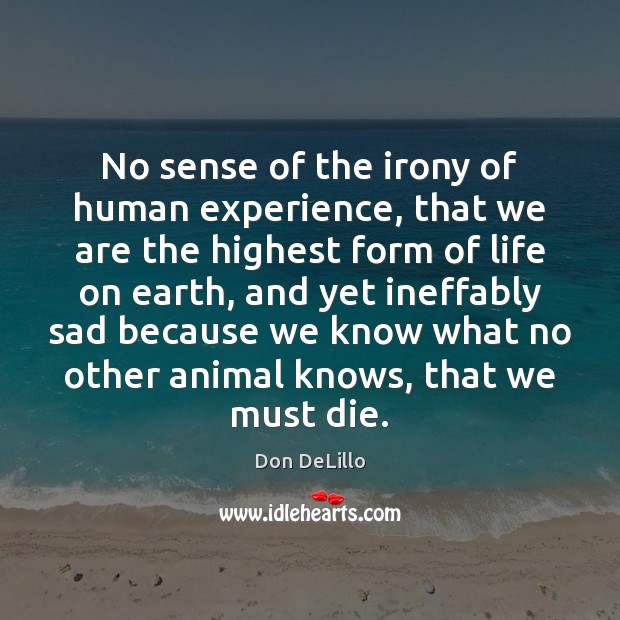 No sense of the irony of human experience, that we are the Don DeLillo Picture Quote