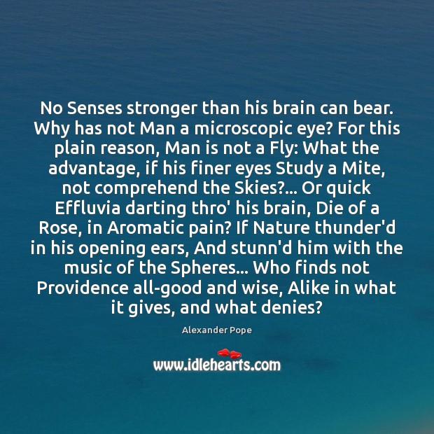 Image, No Senses stronger than his brain can bear. Why has not Man