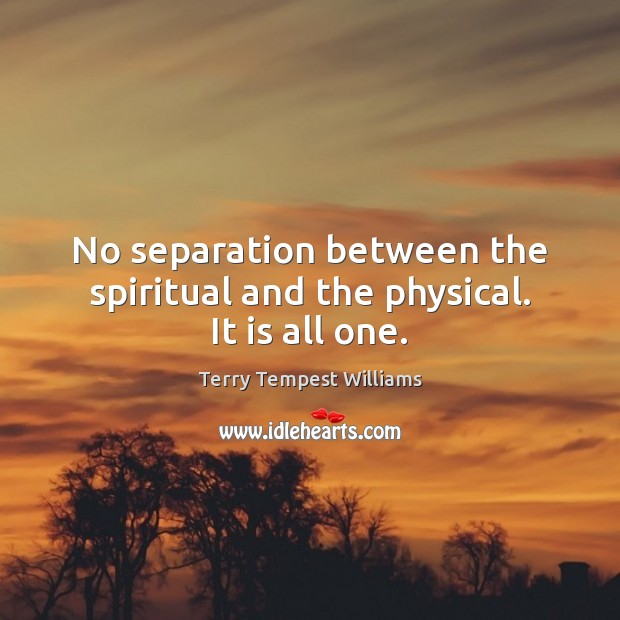 No separation between the spiritual and the physical. It is all one. Image