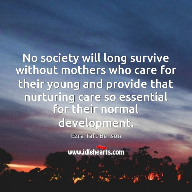 No society will long survive without mothers who care for their young Image