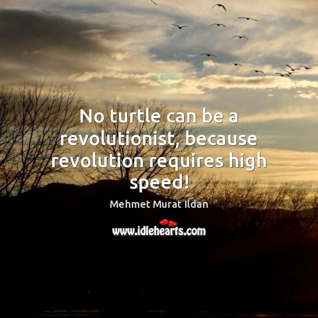 Image, No turtle can be a revolutionist, because revolution requires high speed!