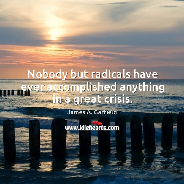 Image, Nobody but radicals have ever accomplished anything in a great crisis.