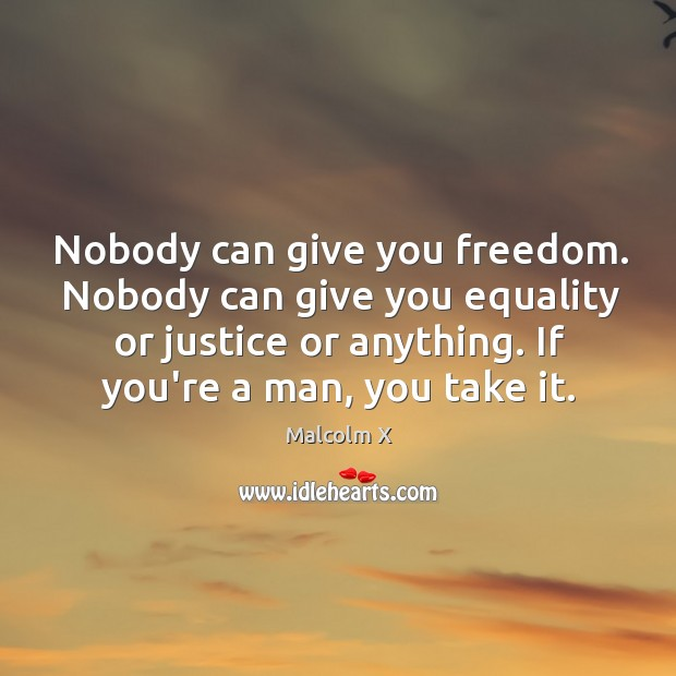Image, Nobody can give you freedom. Nobody can give you equality or justice