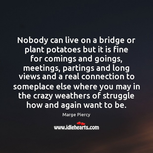 Nobody can live on a bridge or plant potatoes but it is Marge Piercy Picture Quote