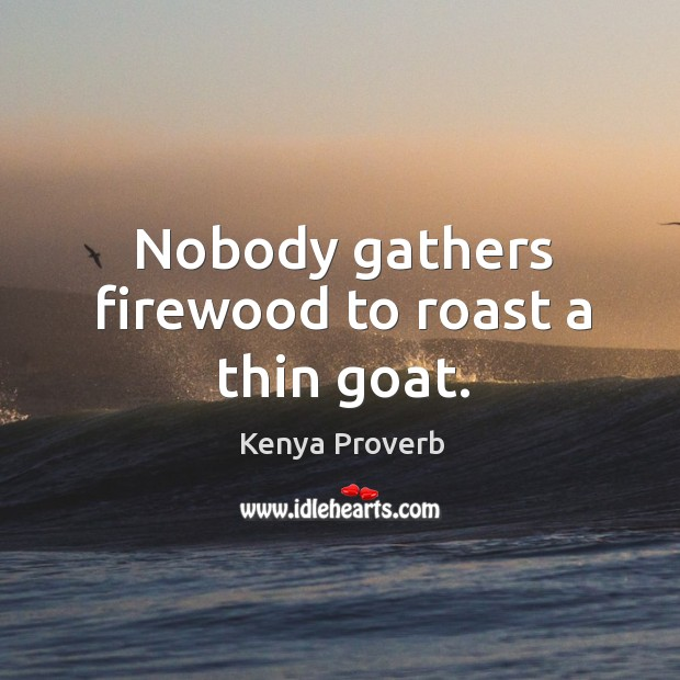 Nobody gathers firewood to roast a thin goat. Kenya Proverbs Image