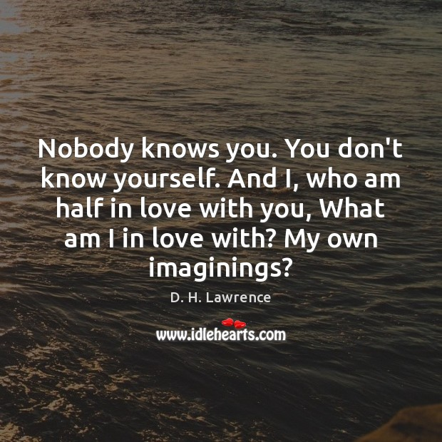 Image, Nobody knows you. You don't know yourself. And I, who am half