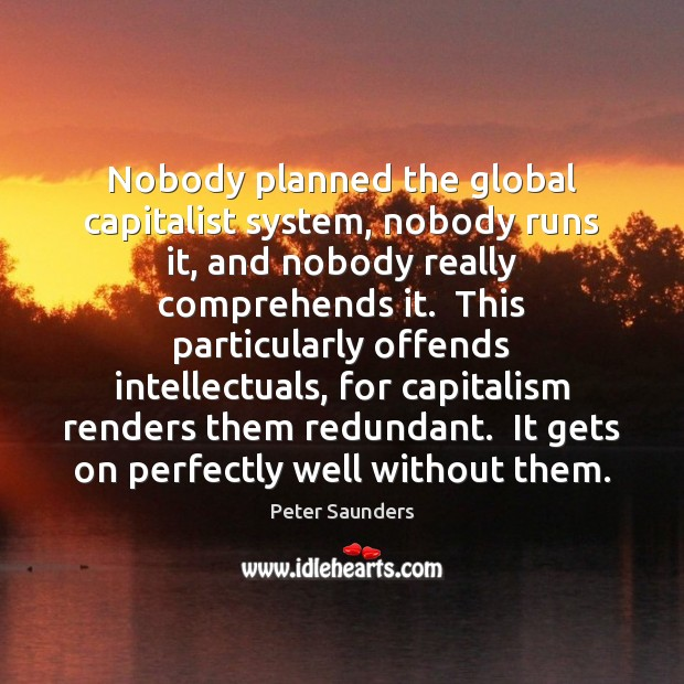 Nobody planned the global capitalist system, nobody runs it, and nobody really Image