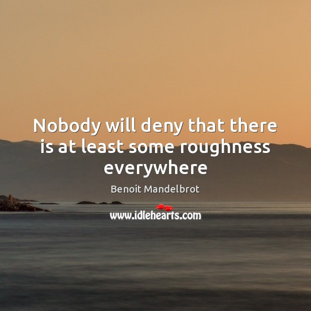Nobody will deny that there is at least some roughness everywhere Benoit Mandelbrot Picture Quote