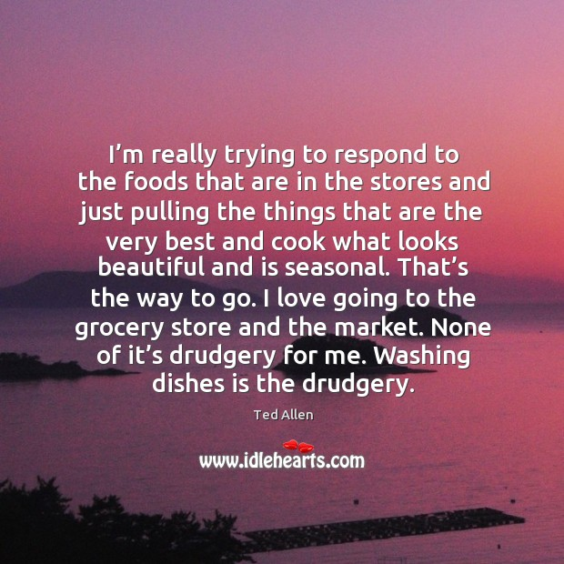 None of it's drudgery for me. Washing dishes is the drudgery. Ted Allen Picture Quote